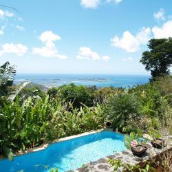 Clothing optional pool and stunning views