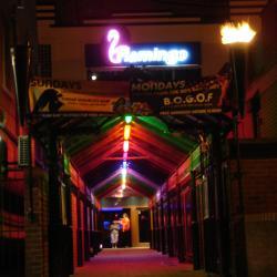 Flamingo Nightclub