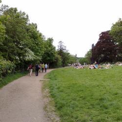 Hampstead Heath Men's Pond