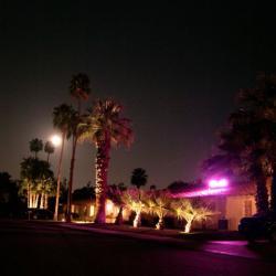 Photo of Warm Sands Villas