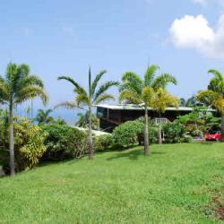 Aloha Guest House Bed & Breakfast