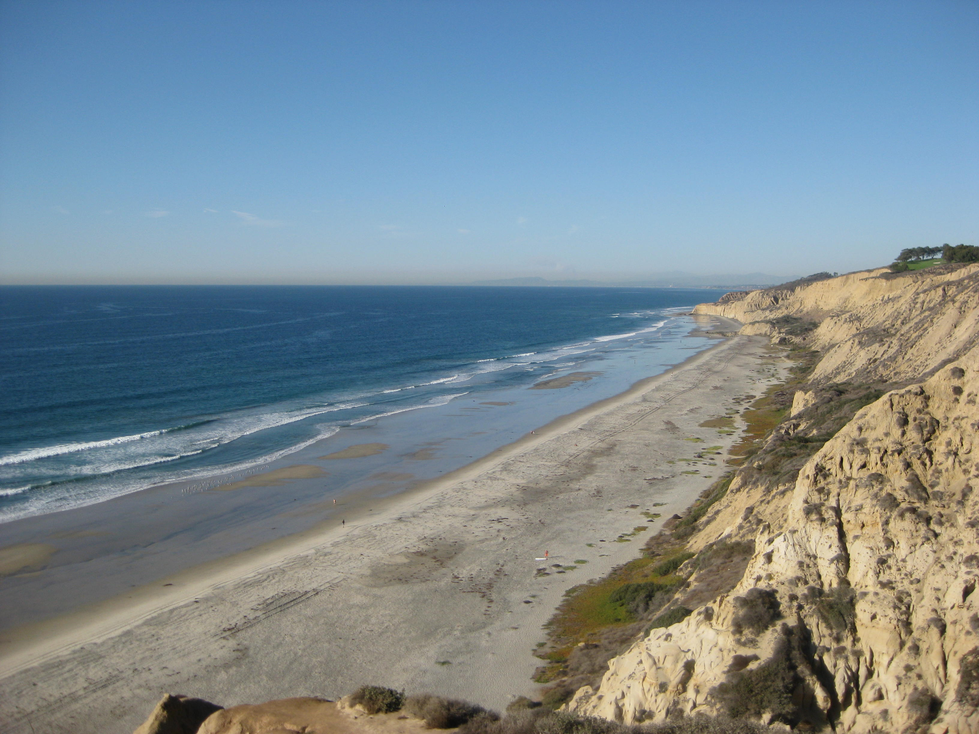 Blacks beach san diego gay