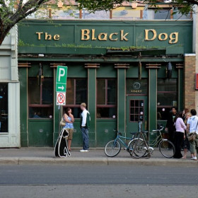 Black Dog Free House