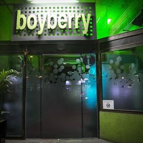 Photo of Boyberry